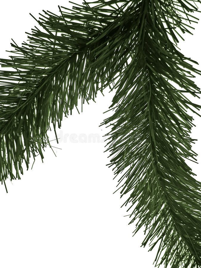 Download Fir branch stock image. Image of holiday, needles, branch - 881451