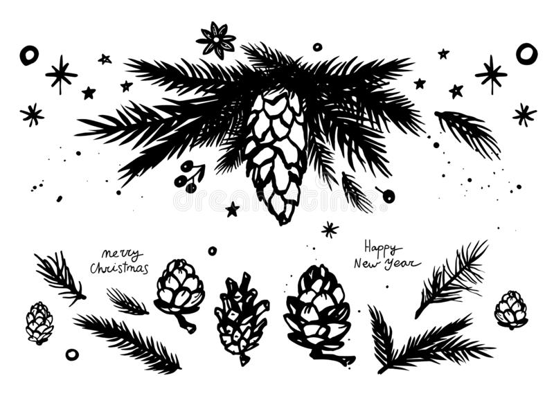 Fir branch and cone for Christmas design royalty free illustration