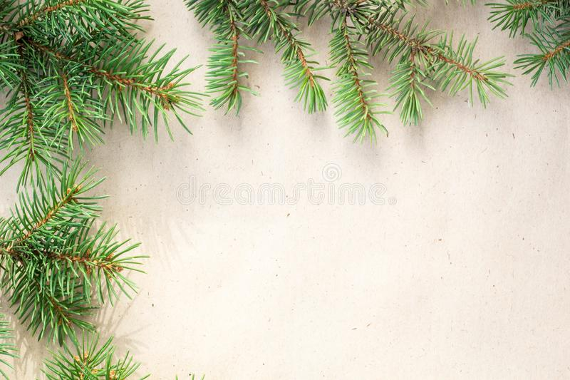 Fir branches border on light rustic background, good for christmas backdrop.  royalty free stock image