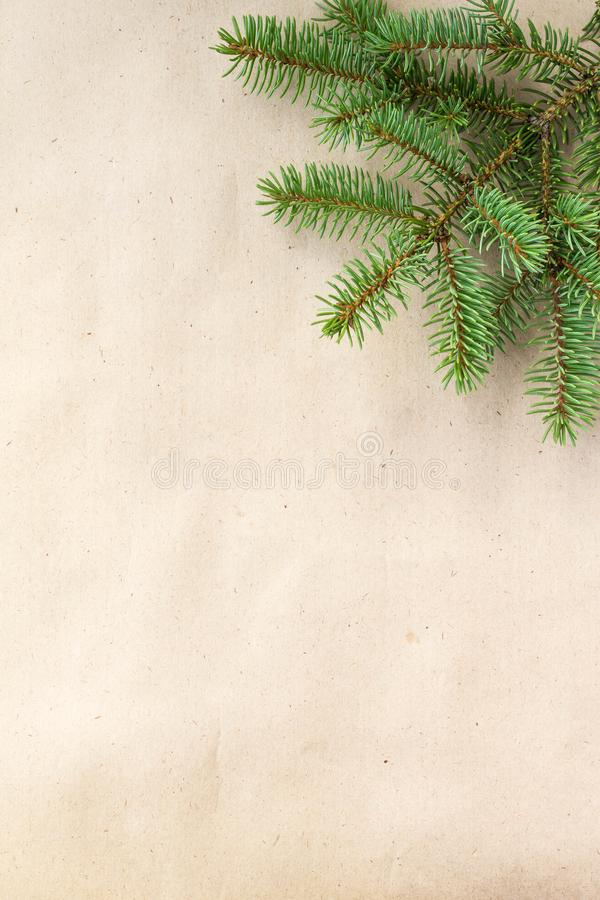 Fir branches border on light rustic background, good for christmas backdrop.  royalty free stock photos