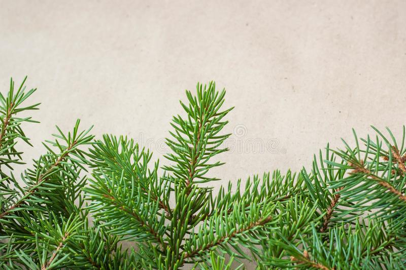 Fir branches border on light rustic background, good for christmas backdrop.  royalty free stock photography