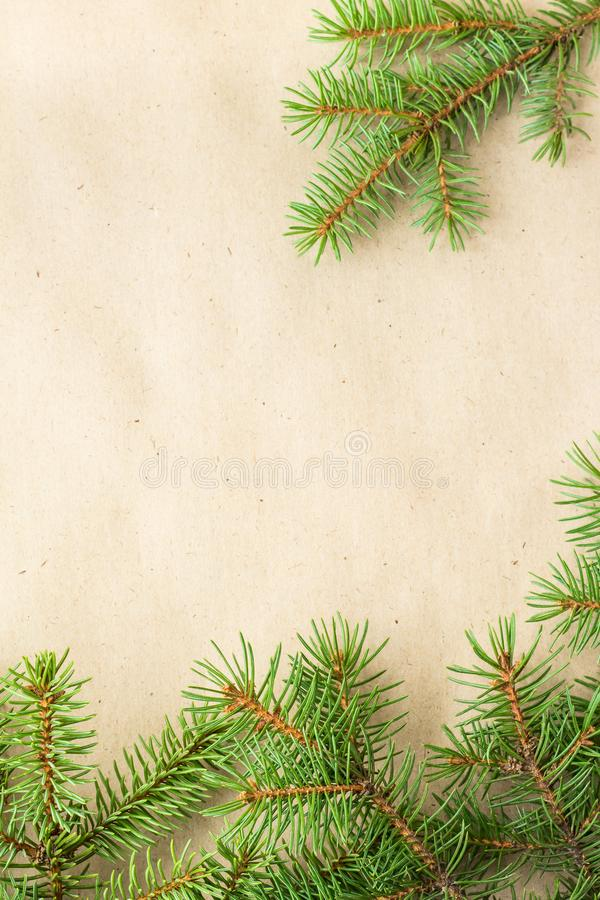 Fir branches border on light rustic background, good for christmas backdrop.  stock images