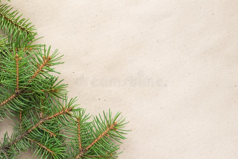 Fir branches border on light rustic background, good for christmas backdrop.  royalty free stock images