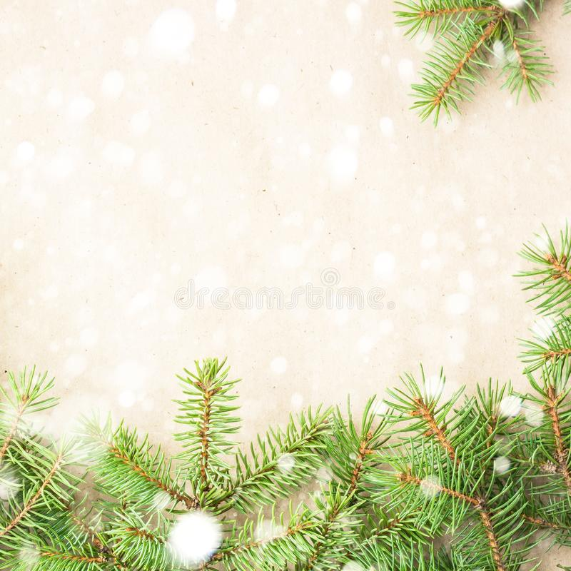 fir branches border with snow on light rustic background, good for christmas backdrop stock photos