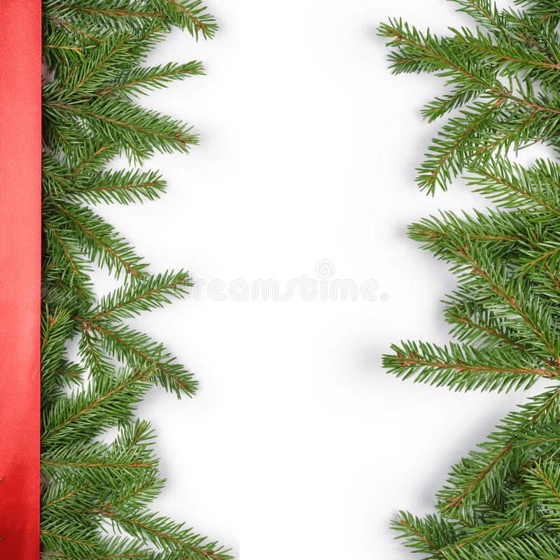 Fir branches border on white background with red stock image