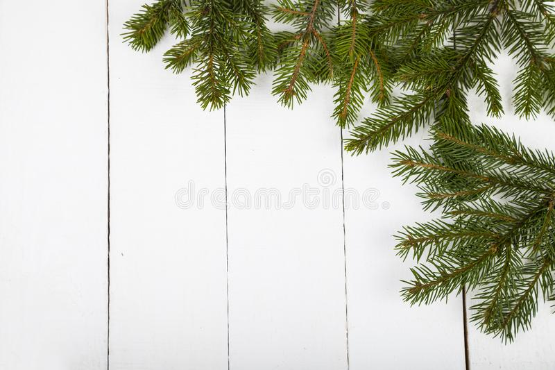 Fir branches on a white wooden background. stock photography