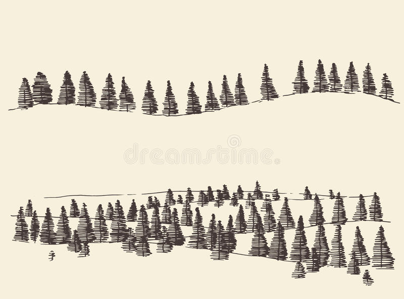 Fir Forest Contours Engraving in Mountains. Mountains with fir forest contours of the mountains engraving vector illustration hand drawn sketch royalty free illustration