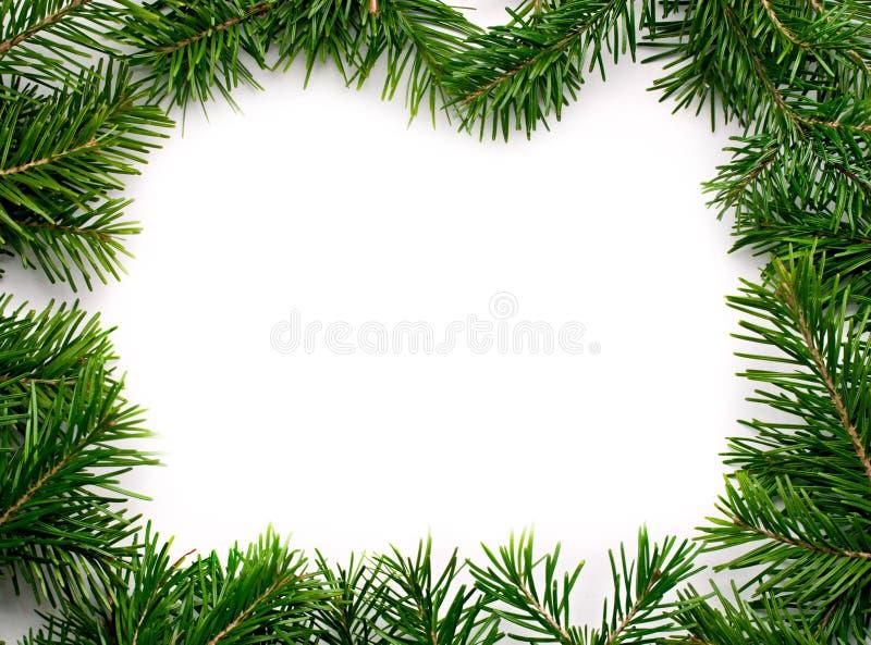 Download Fir frame stock image. Image of design, christmas, furtree - 17849027