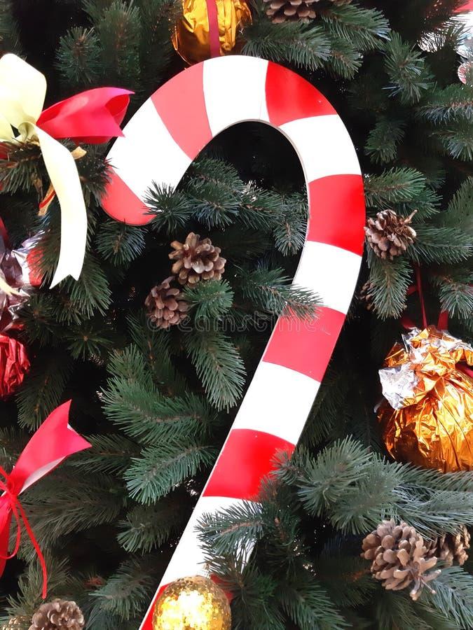 Fir, symbol of christmas, fragment. New Year decoration. Festive photo modern royalty free stock photos