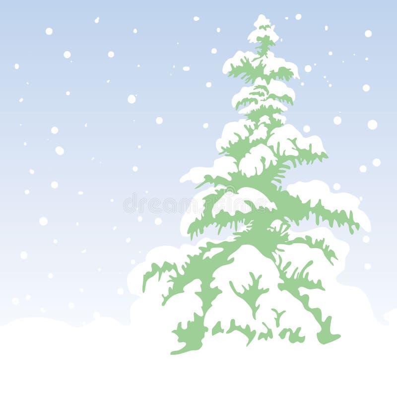 Fir-tree stock illustration