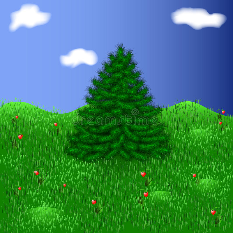 Fir tree on a beautiful meadow among strawberries royalty free stock photos
