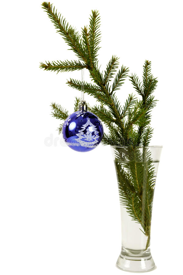 Fir-tree branch in a glass with a toy stock image