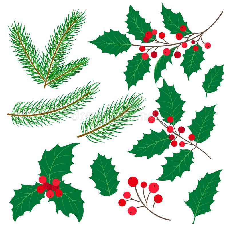 Fir tree branches, mistletoe leaves and berries. Set of fir tree and mistletoe branches with leaves and berries, Christmas decoration, flat cartoon style vector stock illustration