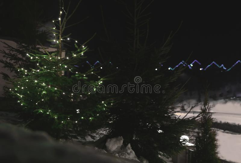 Fir tree with Christmas lights and snow. Outdoors stock photo