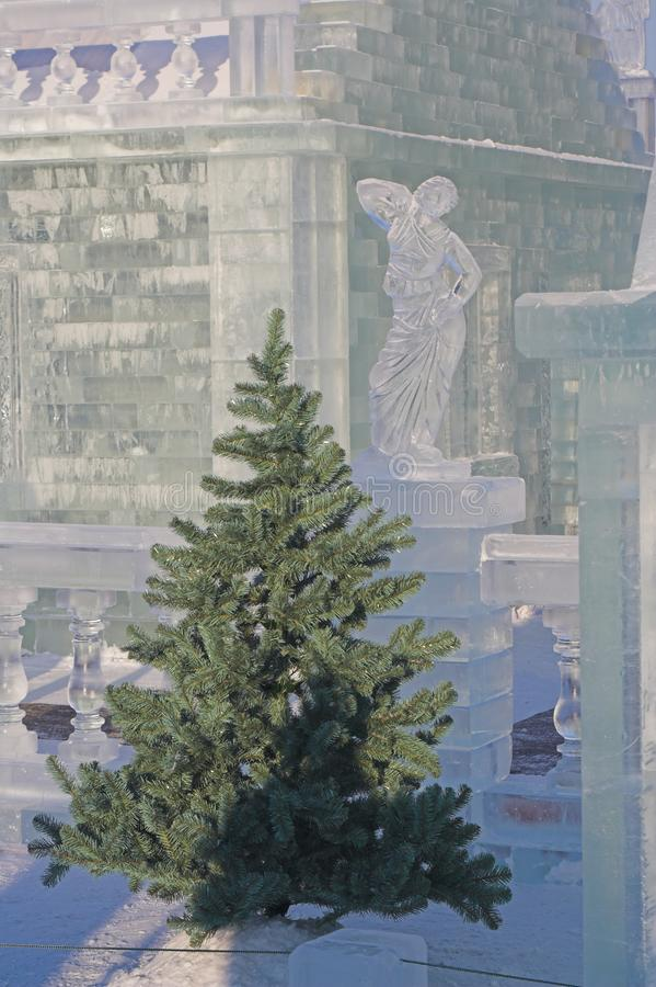 Download Fir-tree and ice sculpture stock image. Image of frigid - 1478907