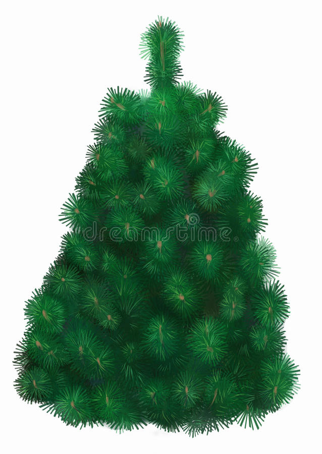 Fir tree isolated royalty free illustration
