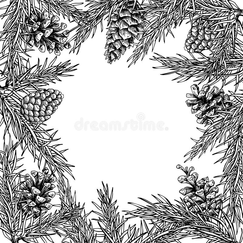 Fir tree and pine cone hand drawn vector square frame for winter. And holiday decor. Botanical xmas and new year illustration. Great for greeting card, poster stock illustration
