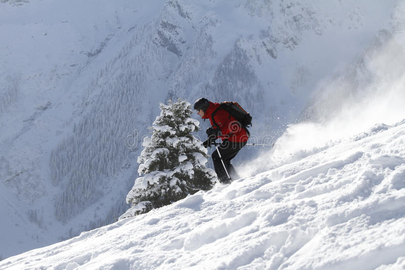 Fir_tree_skiing imagem de stock royalty free