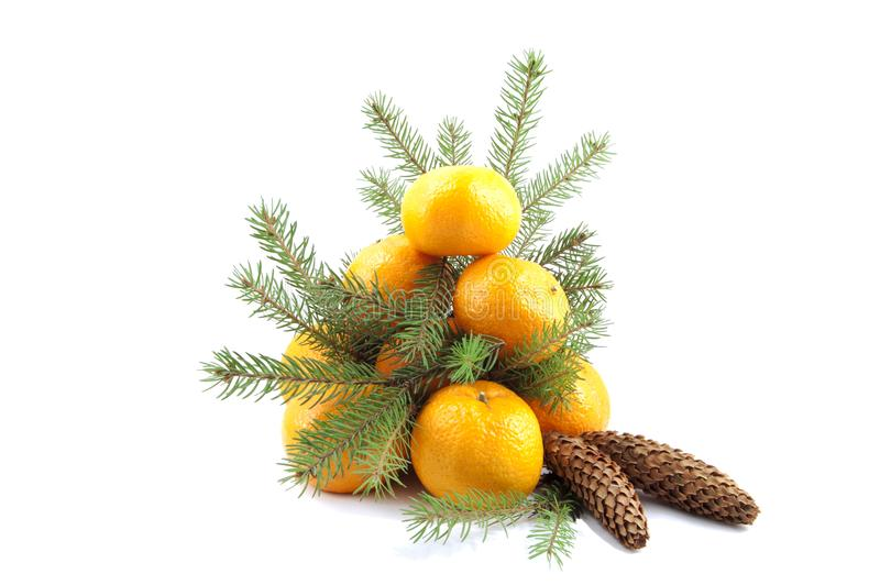 Fir-tree from tangerine with green branches stock photography