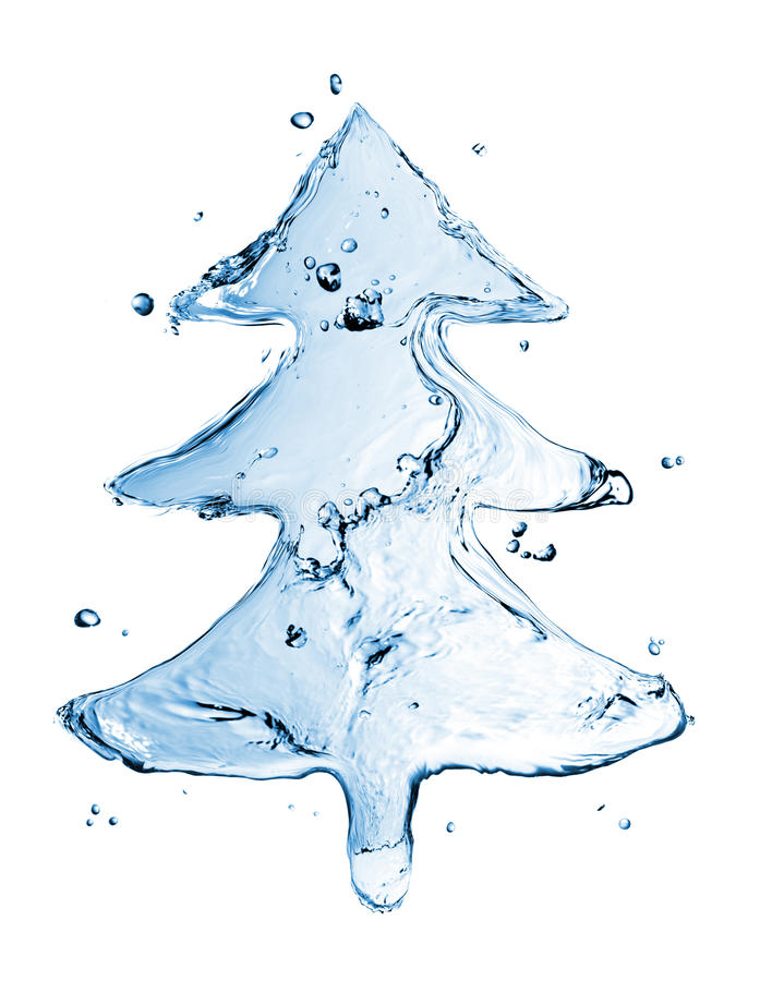Download Fir tree from water splash stock image. Image of background - 16380583