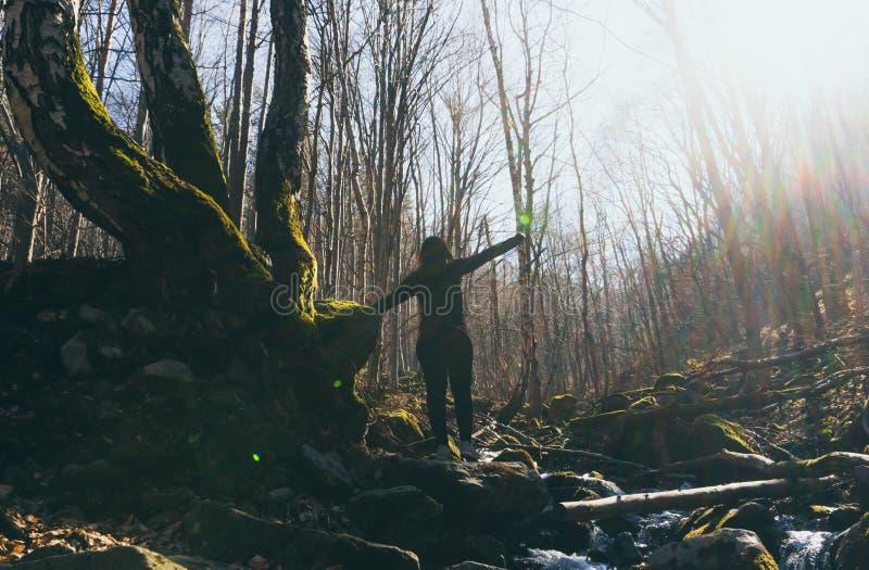 Fira den lyckliga kvinnan för frihet som upp till känner sig vid liv och fria armar lyftt himmel, positiv flicka i en flod i skog arkivfoto