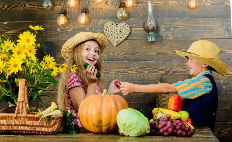 Fira nedgångtraditioner Idé för grundskolanedgångfestival Pumpa för grönsaker för barnlek Kläder för ungeflickapojke arkivfoton
