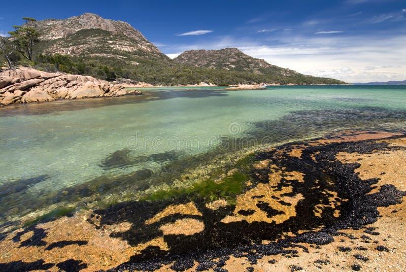 Fira smekmånad fjärden, den Freycinet nationalparken, Tasmanien, Australien arkivbilder