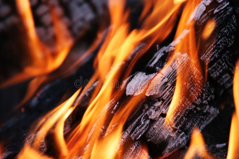 Download Fire stock image. Image of horizontal, beautiful, blazing - 10782265