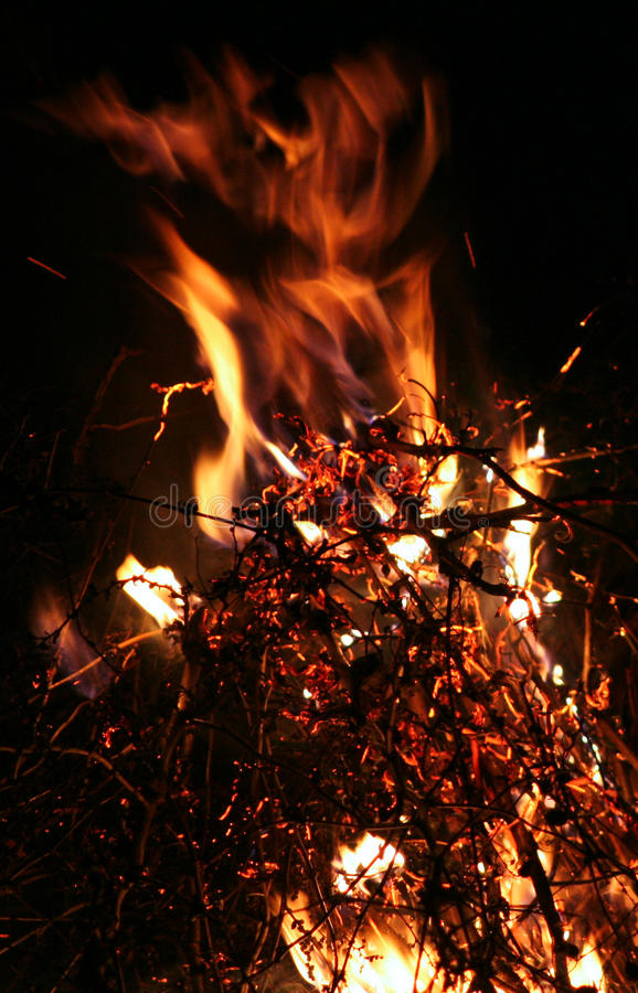 Download Fire stock photo. Image of element, burning, aflame, tongues - 12042240