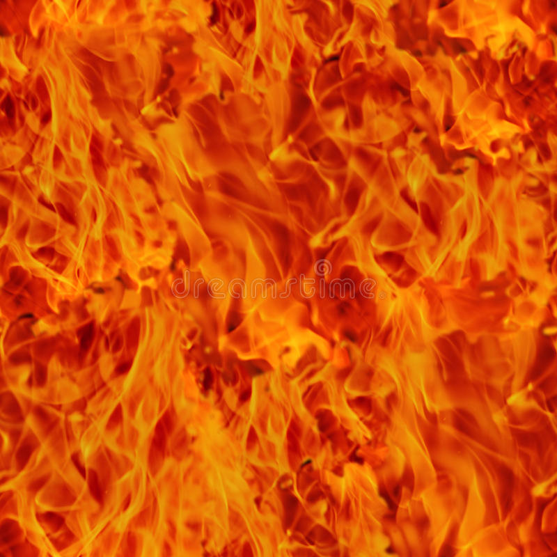 Download Fire stock image. Image of fire, combustion, campfire - 20113585