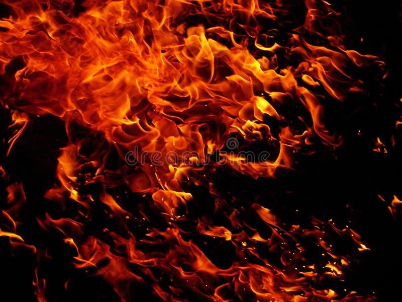 Download Fire stock photo. Image of bonfire, flames, heat, orange - 2143412