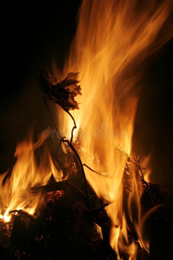Download Fire Stock Photography - Image: 2304612