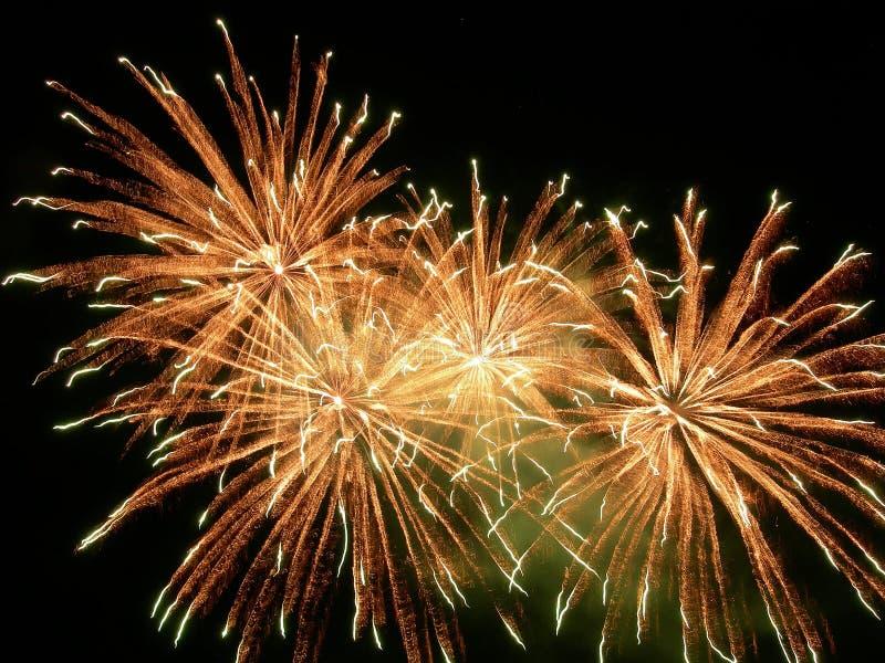 fireworks royalty free illustration