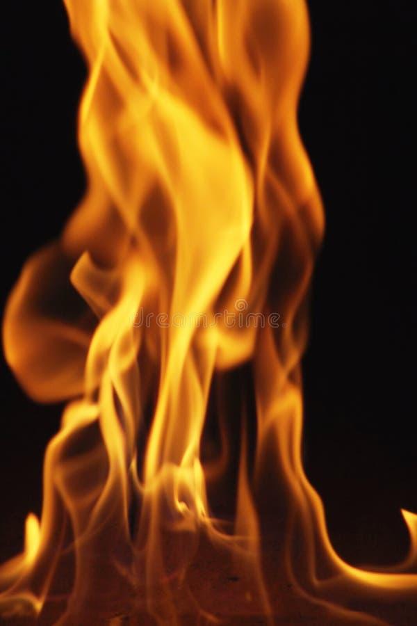 Fire 6. Fire column