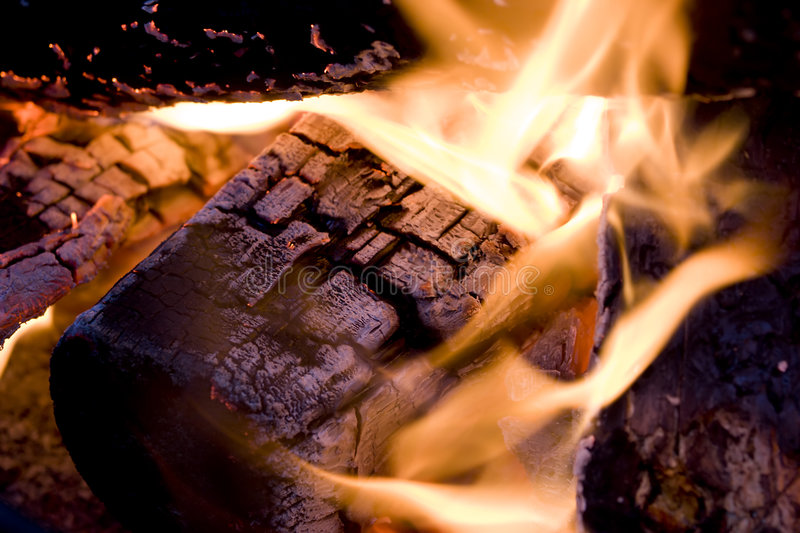 Download Fire stock image. Image of camping, fire, ember, wood - 6470339