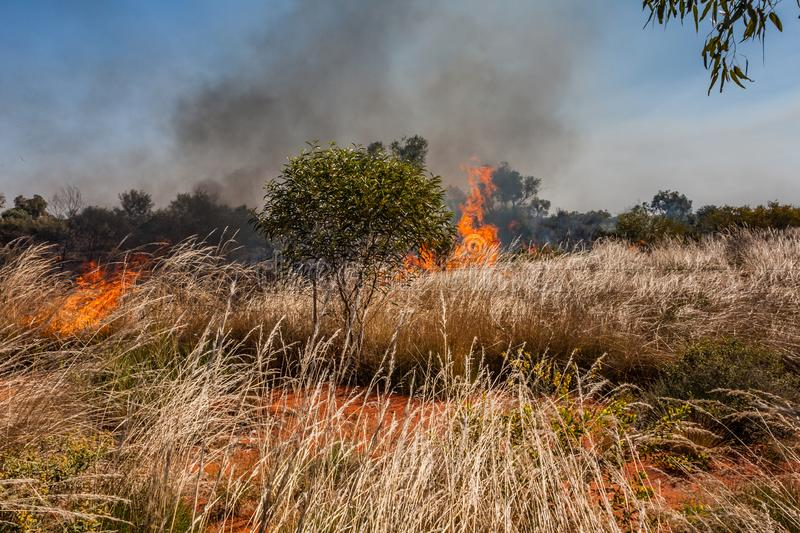 A fire in the Australian outback. Fires due to various natural causes are very common in the Australian outback stock image