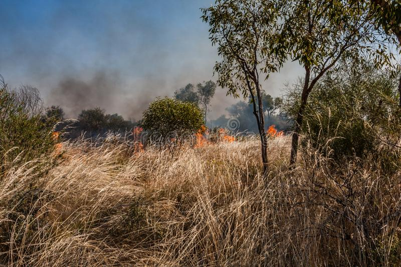 A fire in the Australian outback. Fires due to various natural causes are very common in the Australian outback royalty free stock image