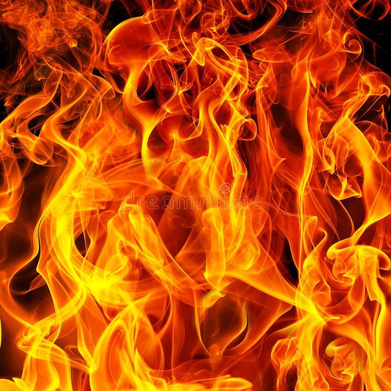 Fire on a black stock photos