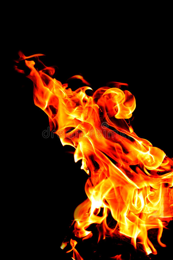 Fire burning on a black background. Texture of fire, flame on a dark background. Hot flame of red-yellow color. Isolated on a blac. K background royalty free stock image