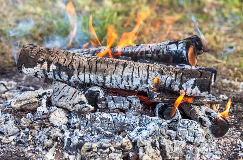 Download Fire burning in a campfire stock image. Image of hell - 39505811