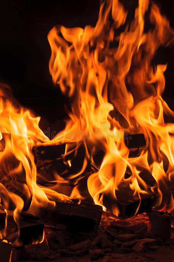 Fire from burning logs. The fire from burning logs royalty free stock photography
