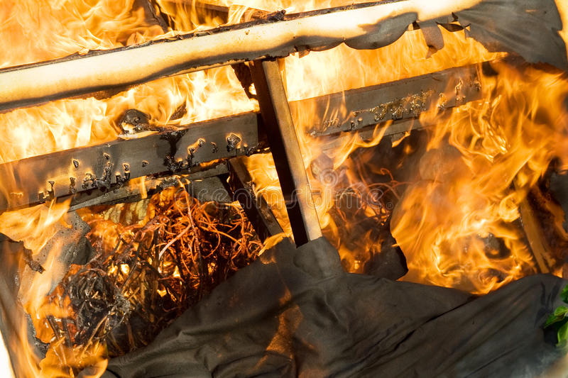 Download Fire Burning Wood Royalty Free Stock Image - Image: 11997556