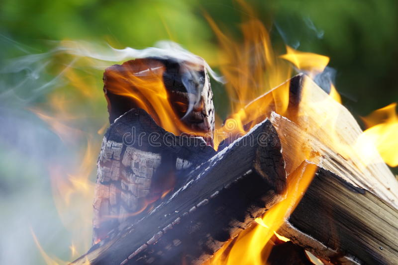 Fire. Burning wood in the yard, Bonfire royalty free stock photo