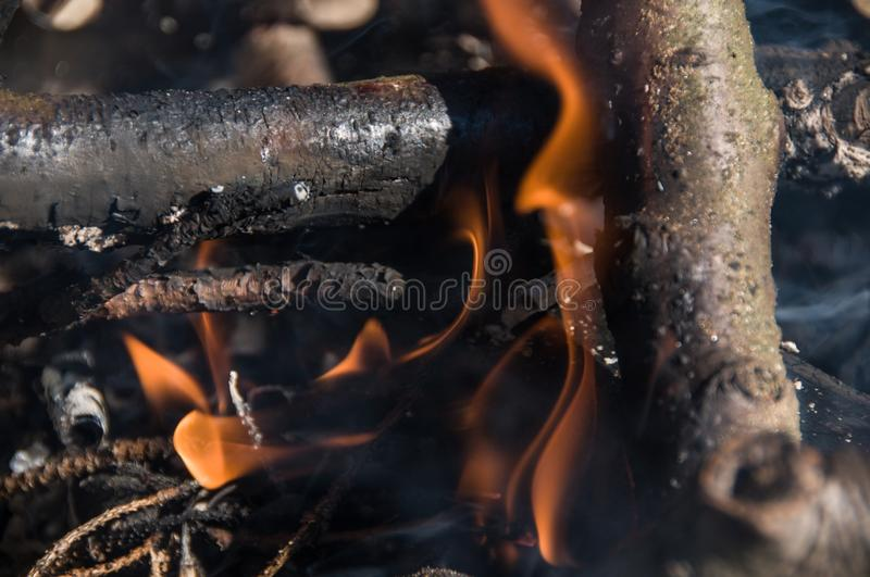 Fire in camp. Bonfire royalty free stock images