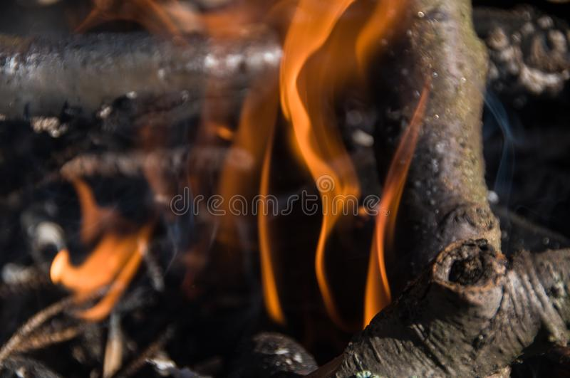 Fire in camp. Bonfire stock photos