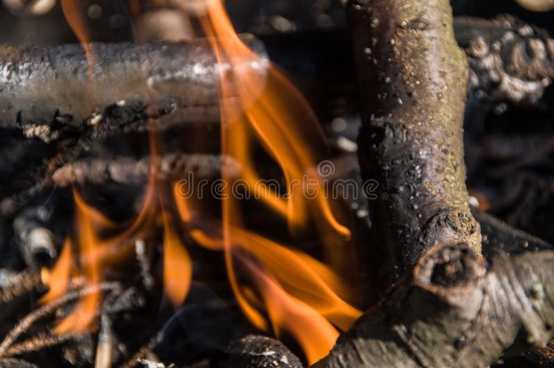 Fire in camp. Bonfire royalty free stock photography