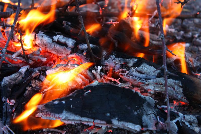 Fire, Campfire, Geological Phenomenon, Charcoal royalty free stock photography