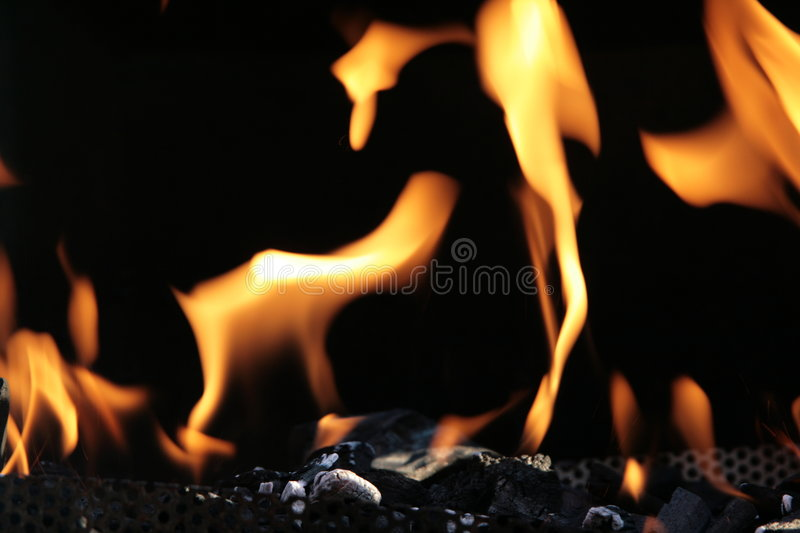 Fire and coal royalty free stock image