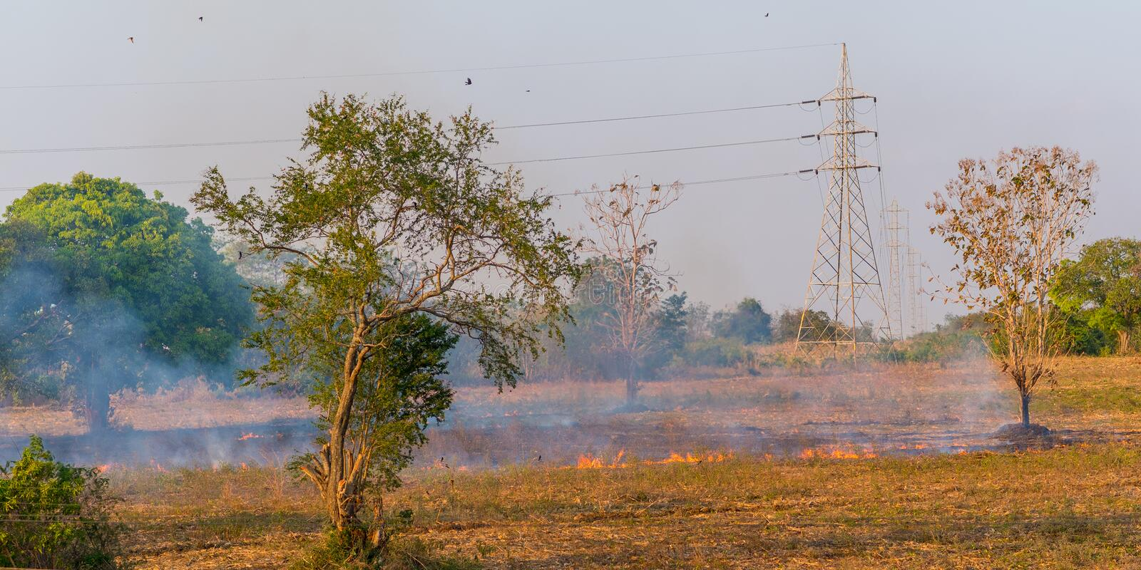 Fire in the field below power lines stock photos