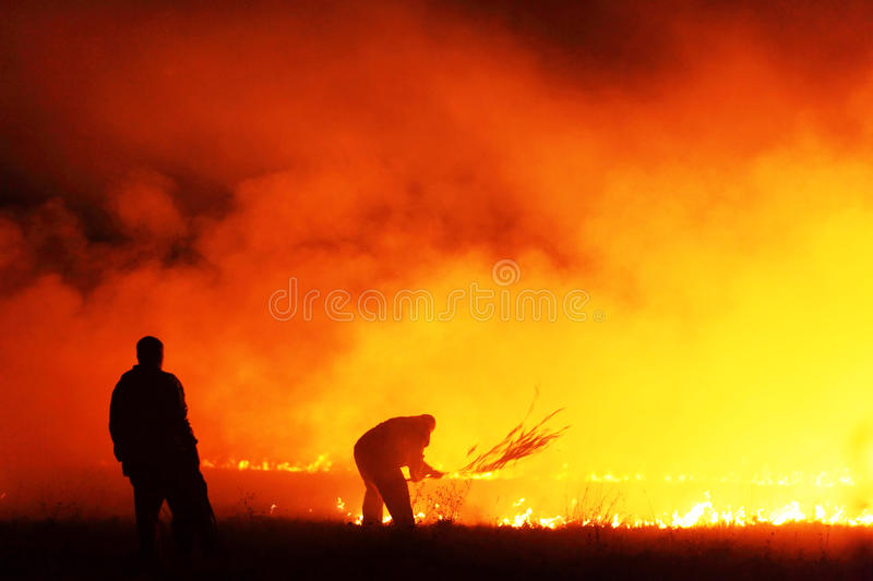 Fire fighters. Workers fighting a fire in a field royalty free stock photography